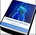 E-book: Lymfatický systém – aktualizovaná verze
